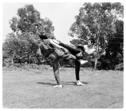 Le Kung-fu