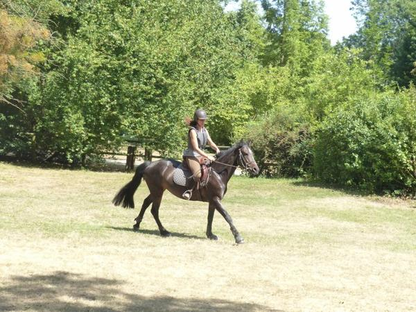 17 JUILLET, LAST DAY ACBB PONEY