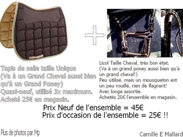 LOT -> Choco/Beige -> EXCELLENTE AFFAIRE.