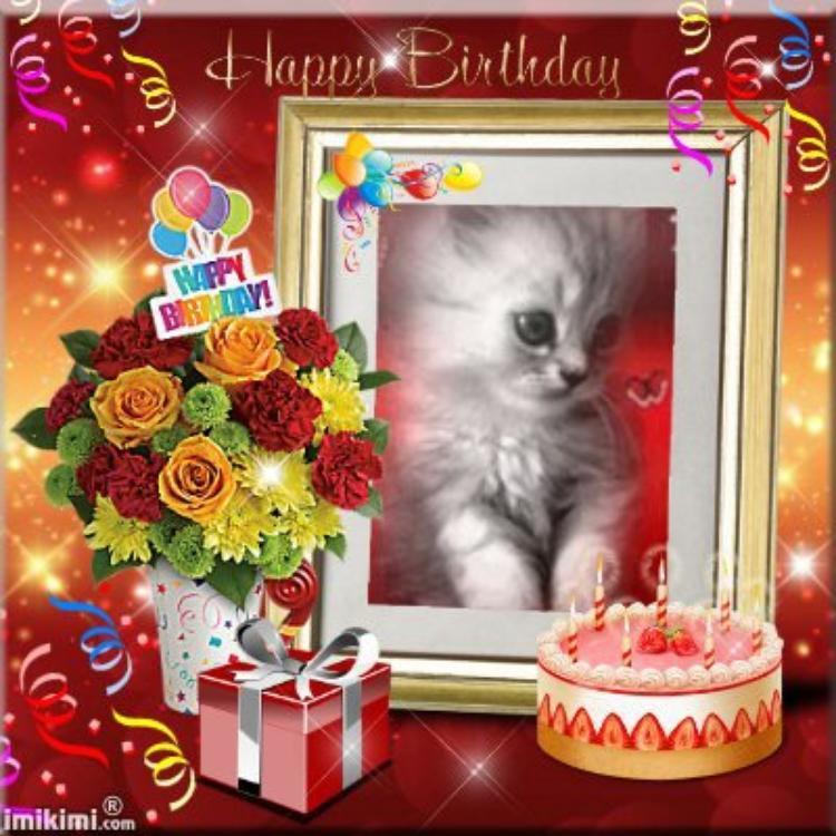joyeux anniversaire a mon amie moi-et-mes-loulous