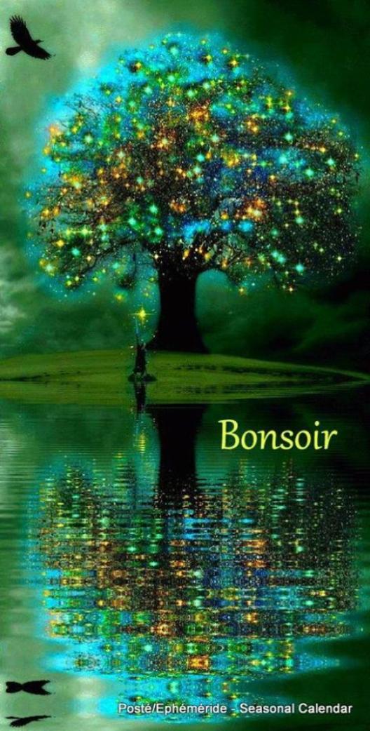 BONNE SOIREE...