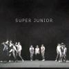 It's You . Super Junior ~