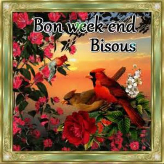 *** Bon week end ***