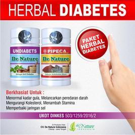 Menyembuhkan Diabetes Dengan Obat Herbal