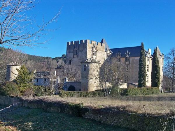 Châteaux et Palais _ _ Château d'Allemagne-en-Provence