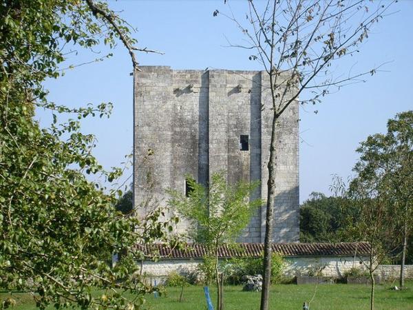 Architecture militaire du Moyen-Âge _ _ Tour de l'Isleau