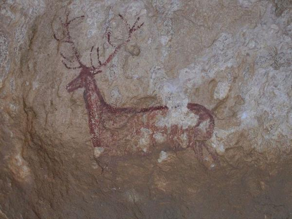 Etude de la préhistoire _ _ Art rupestre