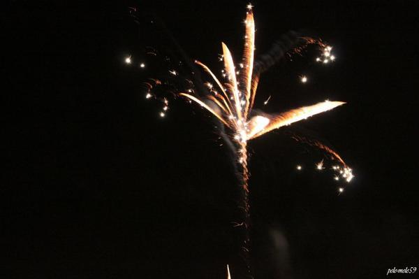 Meilleurs Voeux pour 2013 à tous ! -   ;)