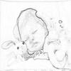 dessin de ma belette a la maternité