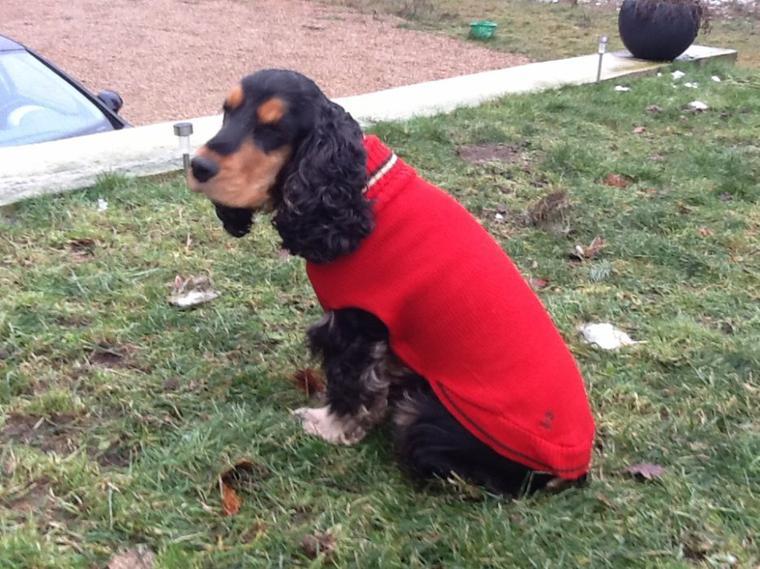 Eden et son pull rouge col roulé.