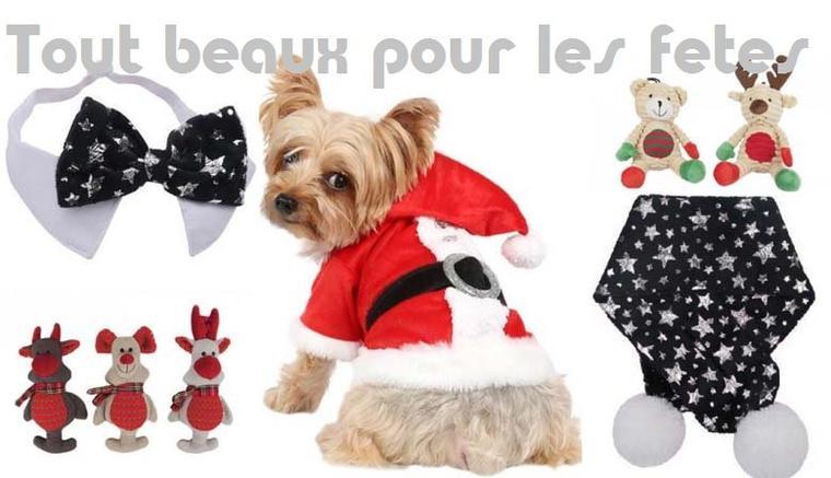 Prêts pour les fêtes de Noël avec la boutique Jaiduchien.com !