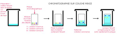 Post le samedi 28 janvier 2012 19 27 tpe parfum - Chromatographie sur couche mince principe ...
