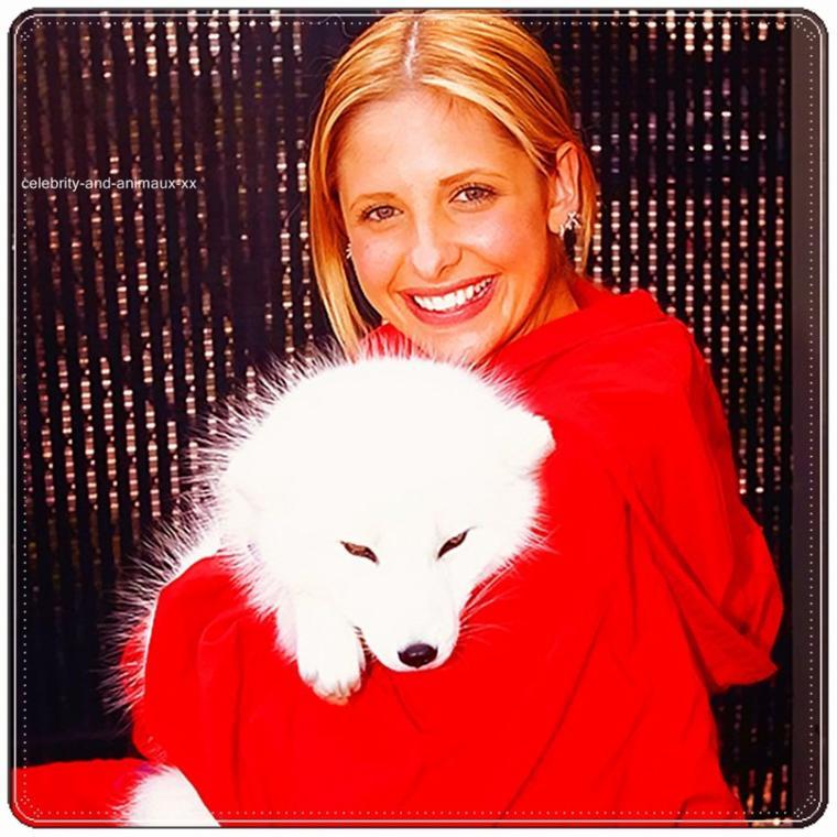 Sassy avec un renard blanc