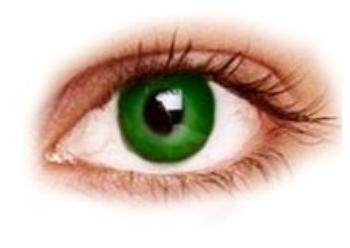 makeup yeux bleu vert ou marron misslovely1621. Black Bedroom Furniture Sets. Home Design Ideas