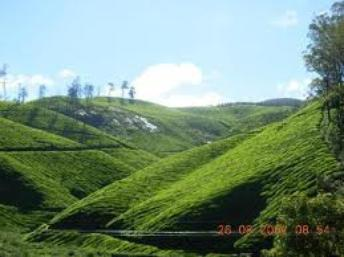 Magnificent Sightseeing Spots with Tours to Kerala