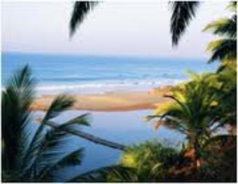 Kerala Tour Packages – Find Yours According to Budget