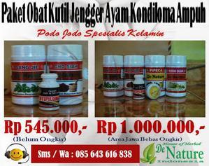 Obat Kutil Kelamin Apotik Herbal De Nature