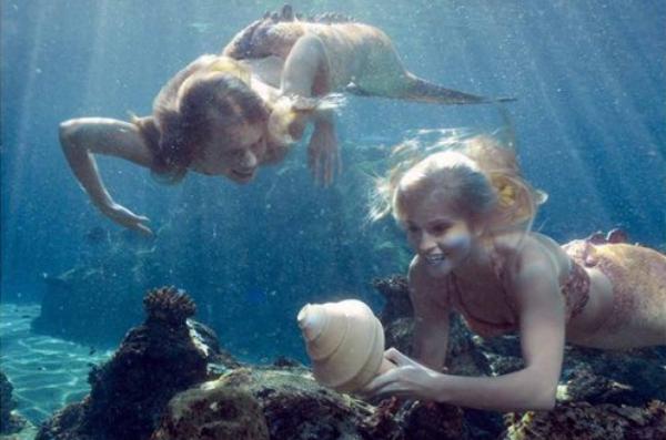 Blog de h2o officiel mermaid for Mako mermaids dailymotion