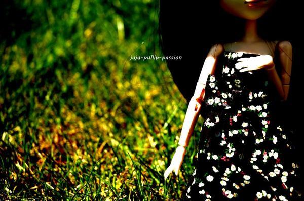 Un air de printemps (3)