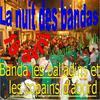 NUIT DES BANDAS 2008 A VILLEGAILHENC