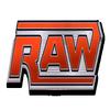 raw 19 07 10