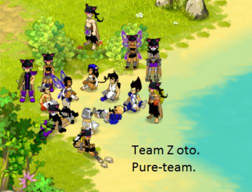 Début de la Team-Pure:D