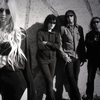 The Pretty Reckless / Goin' Down (2010)