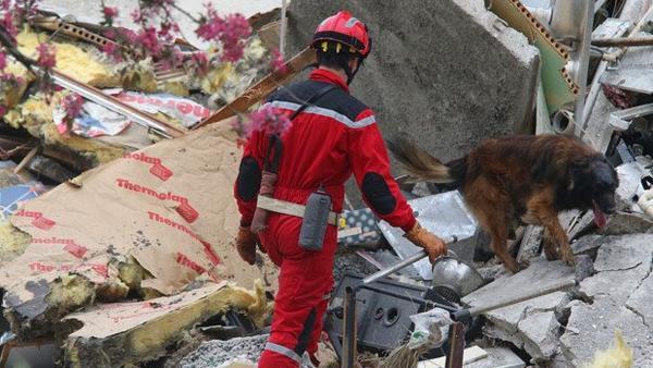 Actu du 29/04/2013 : Effrondement d'un immeuble à Reims