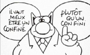 Chose promis, chose due. Les mèmes du corona-pupuce. (updated)