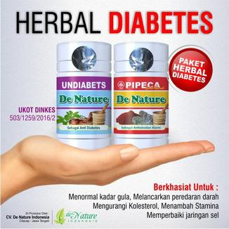 obat ampuh anti diabetes de nature