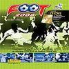 foot 2008