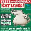 non aux teste sur les animaux