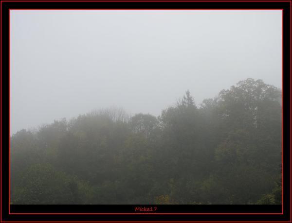 Brouillard et rosée