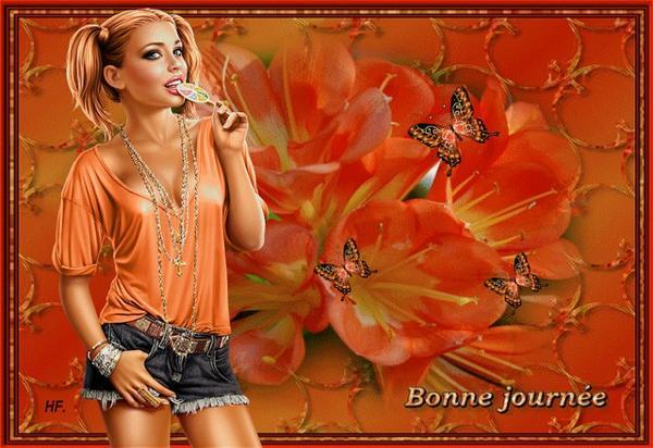 BONNE   SOIREE    MES  AMIS   (E)