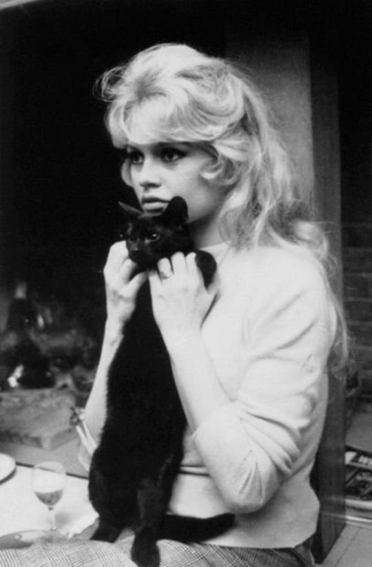 Clin d'oeil de Brigitte Bardot