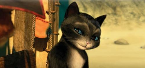 [INSPIRATION n°1] Chat Potté (Kitty)
