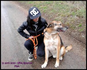 _ Pix : _Myself & Dogs _♥