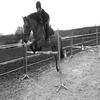 22.12.2008 - Séance d'obstacles avec Lili