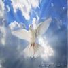 la paix rien que la paix
