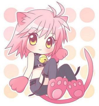 AMU un chat