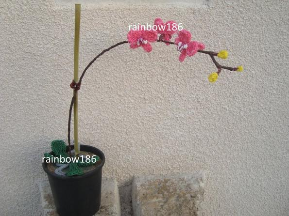 Rainbow loom orchidée