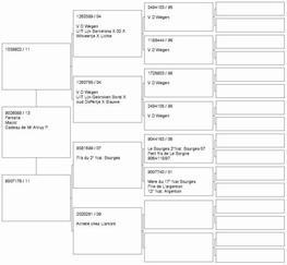 Equipe junior 2013 - Partie n°2