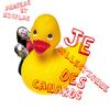 Je Collectionne Des Canards (Vivants)