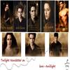 Croisière Twilight