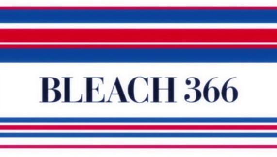 Bleach épisodes