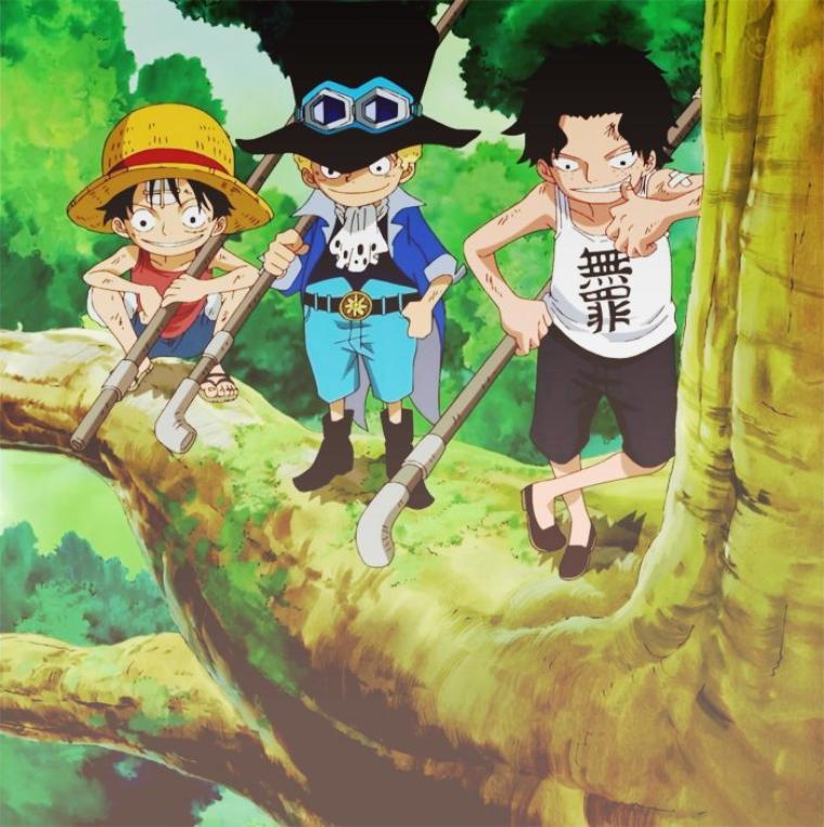 Enfance de Luffy et Ace