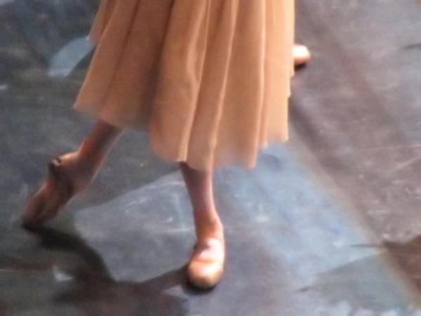 """""""La vie est un ballet ; on ne le danse qu'une fois. """" Proverbe"""
