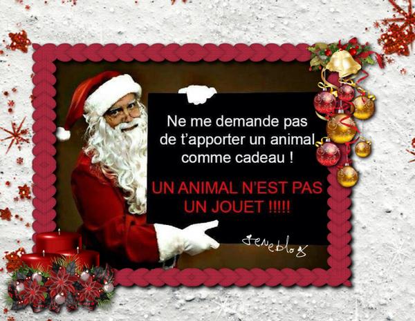 ♥ LES ANIMAUX NE SONT PAS DES JOUETS ♥ BONNE JOURNEE A TOUS ♥2012♥