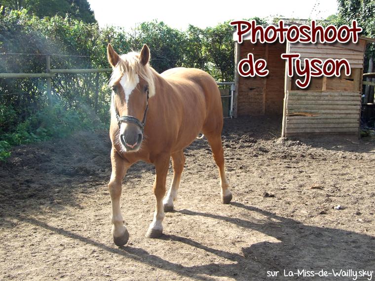 05.10.14 - Photoshoot de Tysen, le ptit nouveau !