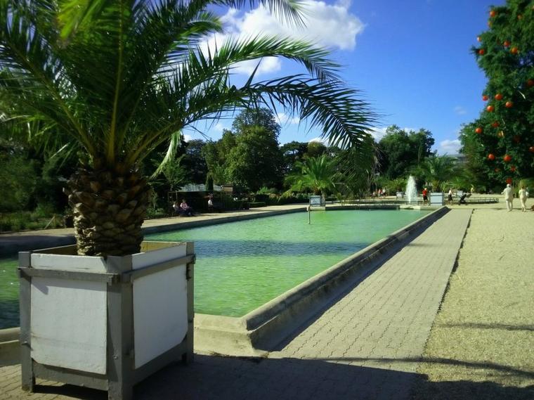 Jardin des plantes , fontaine